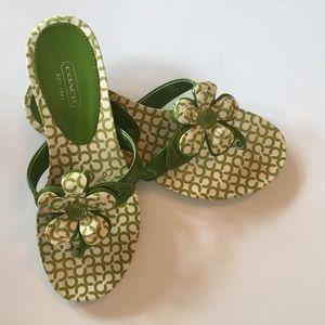 Coach Women's Pattie Thong Sandals Size 7